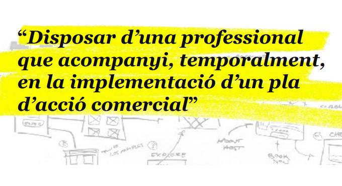 Interim Executive: Acompanyament En La Implementació D'un Pla D'acció Comercial